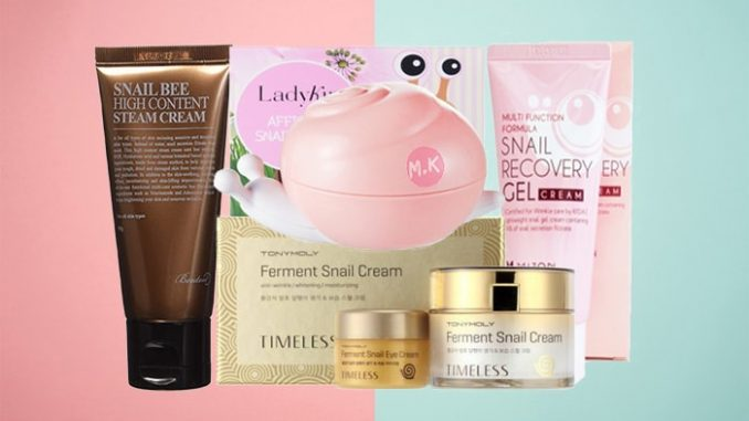 snail cream korea