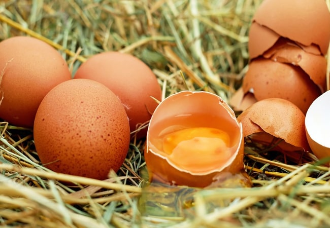 Telur Untuk Kulit Kering